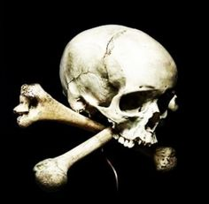 Skull And Bones, Skulls, Art, Art Background, Kunst, Performing Arts, Skeletons, Art Education Resources, Artworks