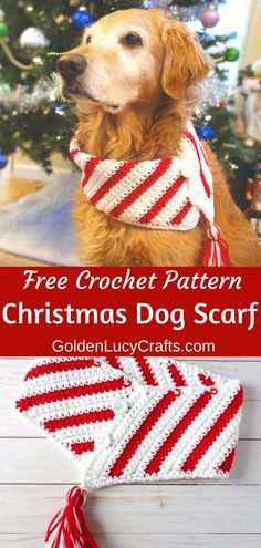 This Christmas crochet dog scarf will make your furry friend look festive and extremely cute! Dog clothing pet apparel DIY crochet for pets bandana cowl neckwarmer free crochet pattern Source by goldenlucycrafts Crochet Dog Patterns, Crochet Lion, Crochet Gratis, Diy Crochet, Crochet Dog Sweater Free Pattern, Crochet For Dogs, Free Christmas Crochet Patterns, Easy Patterns, Ravelry Crochet