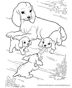 Mother Dog And Puppies Play