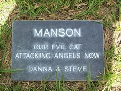 """""""Manson - Our Evil Cat..."""" :-)"""