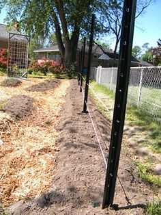 The Tomato Trellis is Now Ready for Planting Tomatoes another interesting design (growing tomato plants how to build) Tips For Growing Tomatoes, Growing Tomato Plants, Growing Tomatoes In Containers, Growing Vegetables, Tomato Trellis, Tomato Cages, Tomato Garden, Trellis Fence, Garden Fencing