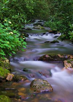 Courthouse creek cascades in Pisgah National Forest in the North Carolina mountains