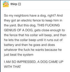 Dog beating the system #Followme #CooliPhone6Case on #Twitter #Facebook #Google #Instagram #LinkedIn #Blogger #Tumblr #Youtube