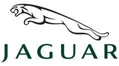 Jaguar Symbol green 1920x1080 (HD 1080p)