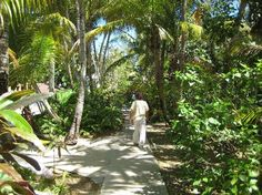 Sivananda Ashram Yoga Retreat: Walking the main path through the ashram.