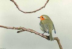 realistic-bird-painting