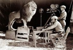 Filming the MGM lion. Awesome.