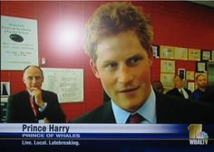 """Whoever added this extra """"h"""" and gave Prince Harry a whole new job title. 