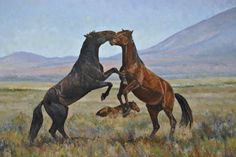 """""""Sparring Partners"""" oil, 36x24, $1,500.00  Two wild horses spar with another unconcerned in the background. These horses were part of the Onaqui herd in Utah."""
