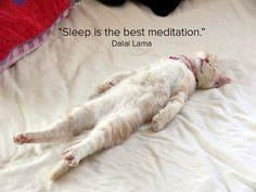 Sleep is the best meditation - Dalai Lama quote