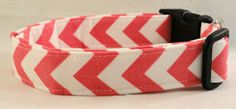 Awesome Pink and White Chevron Stripe Dog Collar Zig by Maltipaws. , via Etsy.