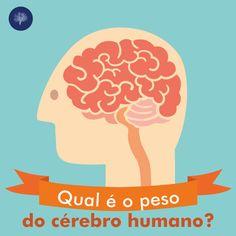 Qual é o peso do seu cérebro? Já parou para pensar isso?  Se fosse para chutar, qual o peso que você daria?   O cérebro masculino e feminino possuem pesos diferentes. O cérebro dos homens pesa em média 1,4kg, já o das mulheres têm uma média de 1,2kg. Podendo variar de acordo com a massa corporal da pessoa, mas não afeta em nada a capacidade intelectual de cada um :D