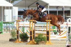 Rolls du Rozel - Médium Class #equestrian #horse #horses #horsejump #competition #equine #chile #equitacion #horserider #showjumping #mijas #españa #spain #costadelsol #equestriantour #autumncup