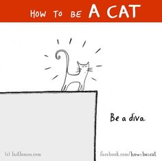 illustrations-of-how-to-be-cat-lisa-swerling-ralph-lazar-21
