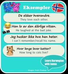 Learn Norwegian with Janne Danish Language Learning, Norwegian Words, Norway Language, Study Journal, English Study, Oslo, Writing Tips, Studying, Genealogy