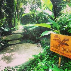 Paradise is the juice bar at Harmony Hotel in Nosara, Costa Rica!