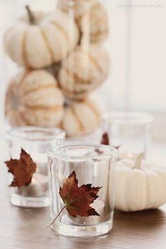 Fall decorations ...white pumpkins in vase + fresh leaves on votives