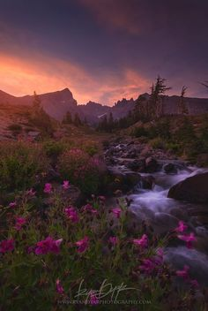 The Blooming Grounds Photo in Album Mountains - Photographer: Ryan