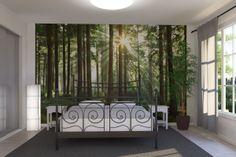 Sunbeam through Trees skog - Fototapet & Tapet - Photowall