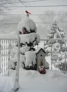 MERRY CHRISTMAS:-)