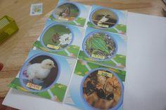 +4월 봄 : 과학영역 교구 만들기 [봄 동물 및 곤충 탐색] : 네이버 블로그 Coasters, Coaster