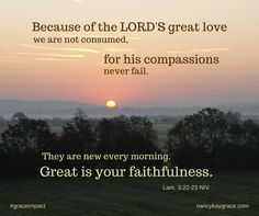Bible verse and thought from day 4, The Grace Impact by Nancy Kay Grace. God's compassions never fail, they are new every morning. www.nancykaygrace.com
