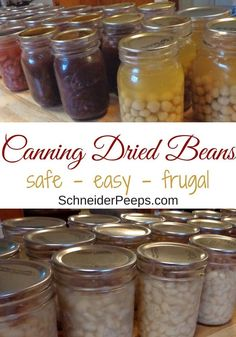 Canning Dried Beans to Save Time and Money Canning dried beans at home can save you time and money. Learn how to make canned black beans, pinto beans, and other canned dried beans with this tutorial. Canning Pressure Cooker, Pressure Canning Recipes, Home Canning Recipes, Canning Tips, Pressure Cooking, Canning Beans, Canning Soup, Canning Food Preservation, Preserving Food