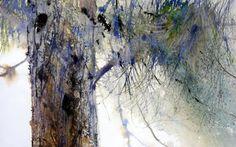 résines (Peinture) par Reine-Marie PiNCHON