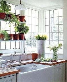 A lovely light- and plant-filled kitchen.