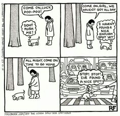 This is sooooo true. Dogs will go potty in front of a crowd