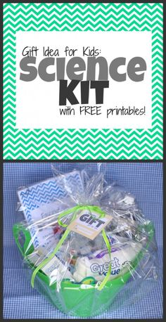 Unique Gift for Kids: Science Kit (includes free printable experiment book and matching gift tags) Perfect for Hunter K, Hunter S, and Tahner!  And Rogan!