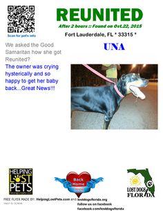 Helping Lost Pets   Dog - Doberman Pinscher - Reunited