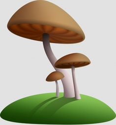 cartoon fungus simple miniature
