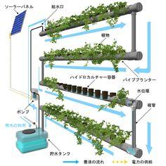 屋上緑化・壁面緑化のUGCS-壁面緑化システム