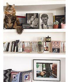 La bibliothèque, livres, chat, parfums de la Parisienne Jeanne Damas
