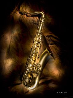 tenor saxophone The kid played this in middle and high school Jazz Art, Jazz Music, Music Love, Music Pics, Music Photo, Music Stuff, Blue Butterfly Wallpaper, Jazz Instruments, Tenor Sax