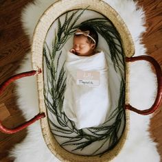 Newborn baby in a Moses basket