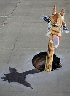 Giraffe pavement art Giraffe pavement art More from my site Sidewalk Chalk Art – Old People Wonderful Street Art 3d Street Art, Street Art Graffiti, Amazing Street Art, Street Artists, Amazing Art, Berlin Graffiti, Graffiti Artists, Awesome, 3d Sidewalk Art