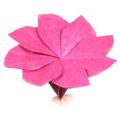 How to make an origami clematis flower (http://www.origami-flower.org/flower-origami-clematis.php)