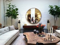 Bddw sofas and live edge coffee table, fiddle leaf fig trees