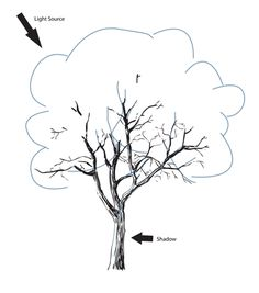 How to draw a tree step 3