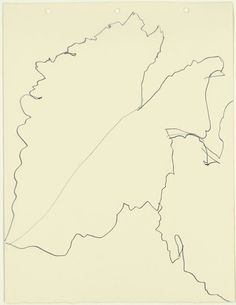 Ellsworth Kelly (plant)