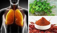 Reinugung von Lunge und Bronchien