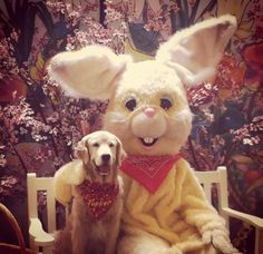 Photos with the Easter Bunny!