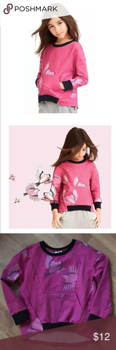 Art & Eden Pullover Description Our Amelia kangaroo pocket sweatshirt is the perfect pop of color to your wardrobe. It's sparrow print and black details give a fashion edge and comfort. 95% organic cotton french terry, 5% spandex Machine wash cold, tumble dry Made in India art and eden Shirts & Tops Sweatshirts & Hoodies