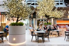 World Architecture Community News - HASSELL's 'Ovolo Woolloomooloo' is a new hotspot to revive the interior of Sydney's Ovolo Hotel Bar Restaurant, Restaurant Design, Courtyard Restaurant, Vintage Restaurant, Restaurant Interiors, Plan Hotel, Food Court Design, Hotels, Hotel Lobby