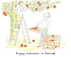 Hermes Autumn Harvest