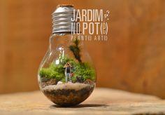 Pote da Lâmpada | Jardim no Pote                                                                                                                                                      Mais