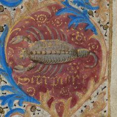 Zodiac sign of Scorpio in a 15th century manuscript by e-codices, via Flickr