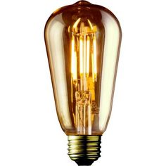 60W Equivalent Warm White ST19 Amber Lens Vintage Edison Dimmable LED Light Bulb (2-Pack)-02939 - The Home Depot